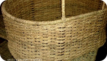 Basketry training course : doum palm leaves